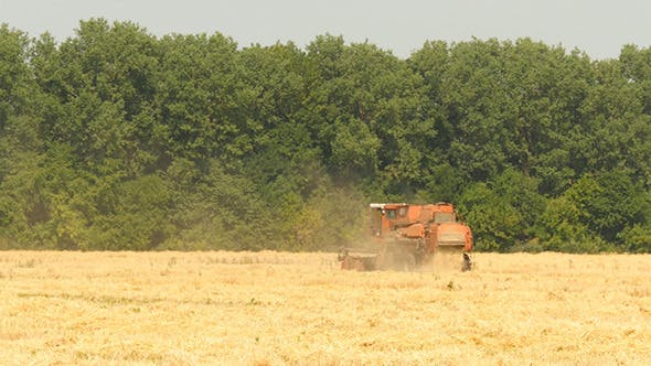 Thumbnail for Old Grain Harvester Working In A Field