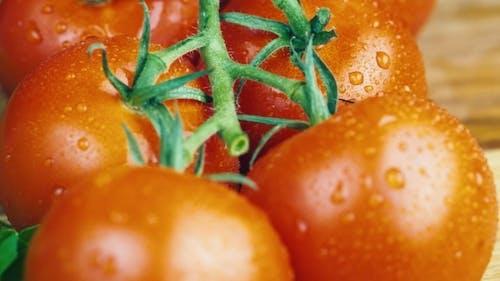 Mehrere Tomaten