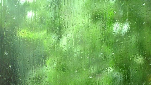Thumbnail for Rain