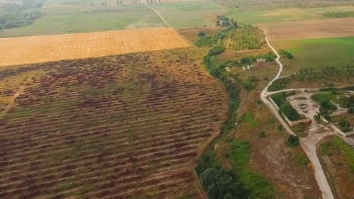 Agricultural Fields And Settlement At Dull Day