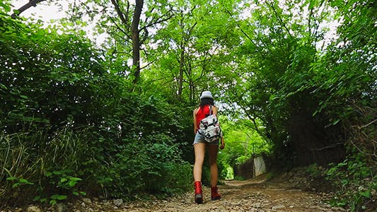 Cover Image for Woman Walking In Nature