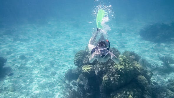 Thumbnail for Snorkeler Diving In Sea
