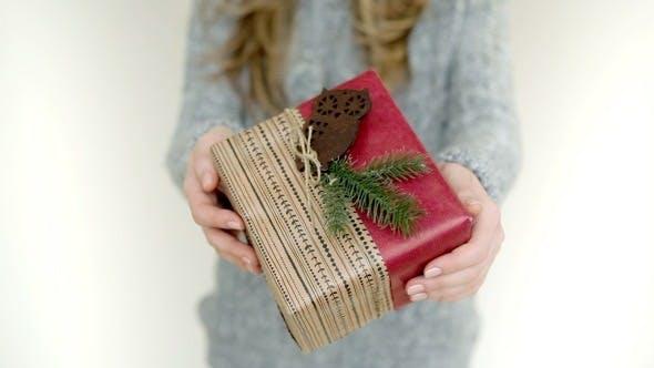 Thumbnail for Christmas Gift with Owl
