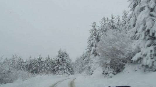 Cover Image for Winter Driving
