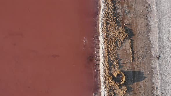 Thumbnail for ncredible pink water and salt shore of Kuyalnik estuary, top drone view. Beautiful nature.