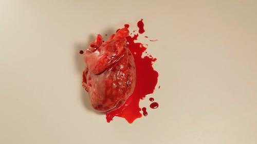 Beating Heart 02
