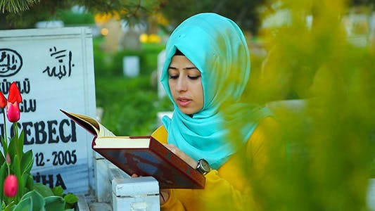 Cover Image for Quran