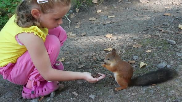 Thumbnail for Little Girl Feeding Squirrel  Nuts In Park 3
