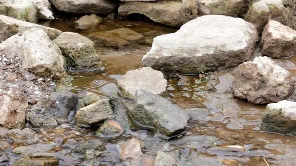 Spring  Flowing Water