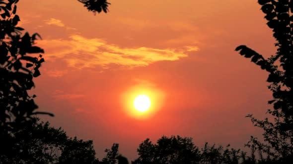 Thumbnail for Sunset Over Forest 1