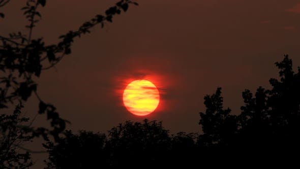 Thumbnail for Sunset Over Forest 2