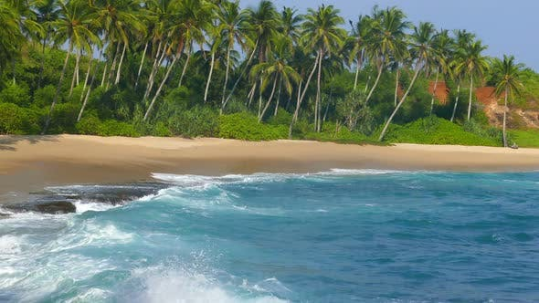 Thumbnail for Beautiful Landscape  Sea Waves On Tropical Beach And Coconut Palms 4