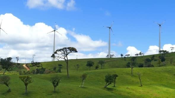 Thumbnail for Wind Turbines On Green Hills - Wind Farm In Sri Lanka 2