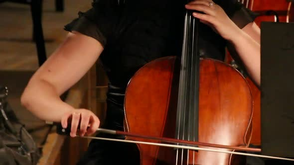 Thumbnail for View On Violoncello In Orchestra 2