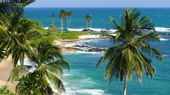 Beautiful Landscape Sea Waves On Tropical Beach And Coconut