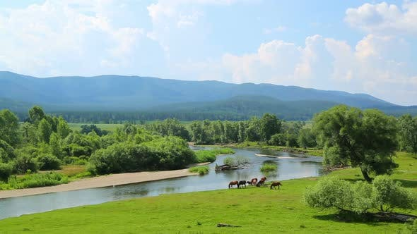 Thumbnail for Summer Landscape  River Between Mountains And Grazing Horses 2