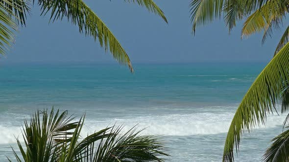 Thumbnail for Beautiful Blue Sea Landscape  Palm Leaves On Foreground 7