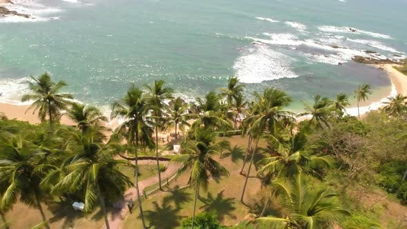 Cover Image for Flying Over Pool, Palm Trees, Beach And Sea In Tropical Resort 2
