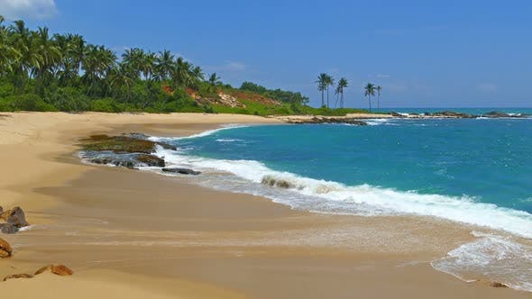 Thumbnail for Beautiful Landscape  Sea Waves On Tropical Beach And Coconut Palms 9