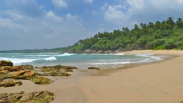 Thumbnail for Beautiful Landscape  Sea Waves On Tropical Beach And Coconut Palms 1