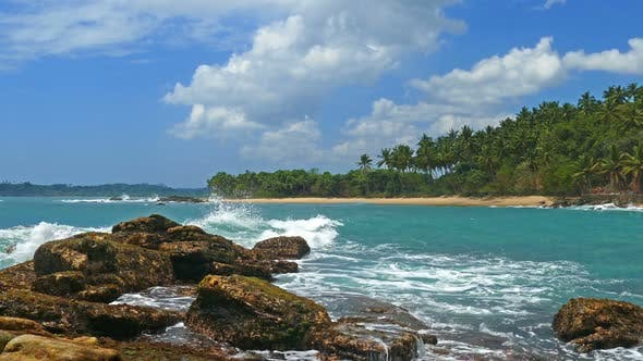 Thumbnail for Beautiful Landscape  Sea Waves On Tropical Beach And Coconut Palms 8