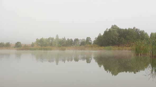 Thumbnail for Lake Landscape In Mist - Trees And Reeds Reflected In Water