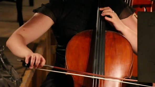 Thumbnail for View On Violoncello In Orchestra -