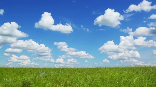 Thumbnail for Background  Green Meadow Under Blue Sky  Clouds