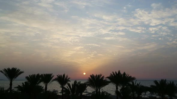 Thumbnail for Beautiful Landscape  Palms And Sunrise Over Sea