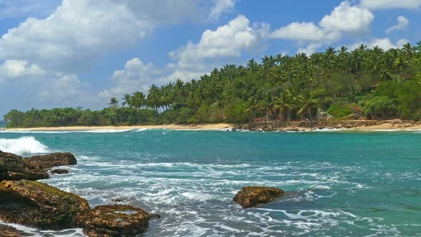 Thumbnail for Beautiful Landscape  Sea Waves On Tropical Beach And Coconut Palms 7