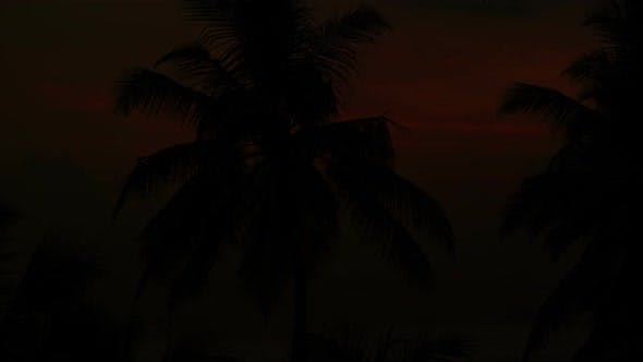Thumbnail for Beautiful Landscape  Tropical Sea Sunset And Palm On Foreground - 2