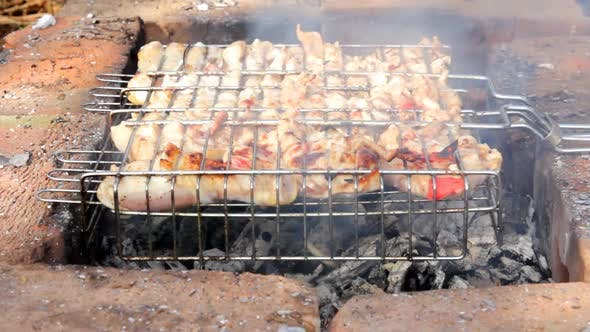 Thumbnail for Cooking Barbecue On Grill 1