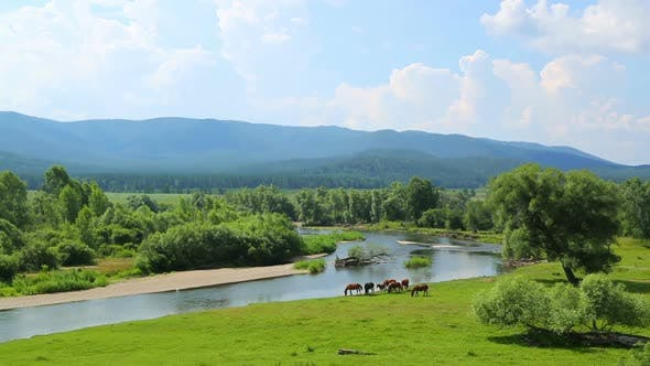 Thumbnail for Summer Landscape  River Between Mountains And Grazing Horses -