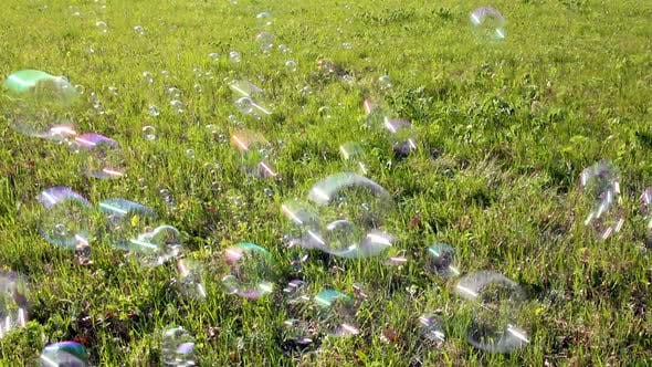 Thumbnail for Soap Bubbles Flying Over Green Meadow