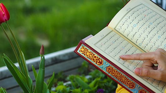 Cover Image for Reading  Quran