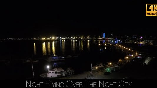 Cover Image for Night Flying Over The Night City