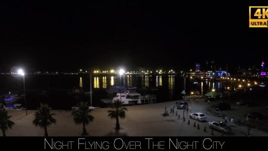 Cover Image for Night Flying Over The Night City 2