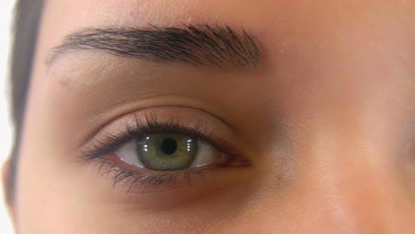 Close Up Woman Green Eyes Macro on White Background, Slider
