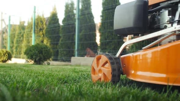 Thumbnail for Lawn Mower