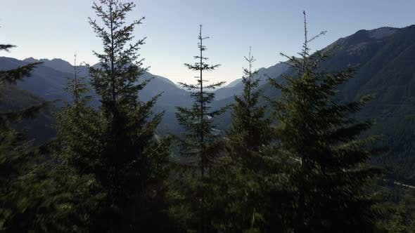 Thumbnail for Forest Tree Aerial Reveal Of Interstate 90 Freeway In Mountain Valley