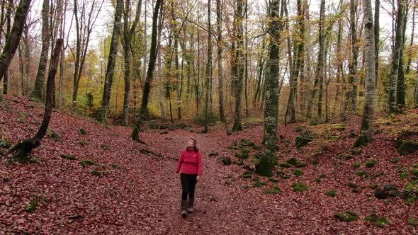 Hiker Woman Walking Through the Forest in Autumn