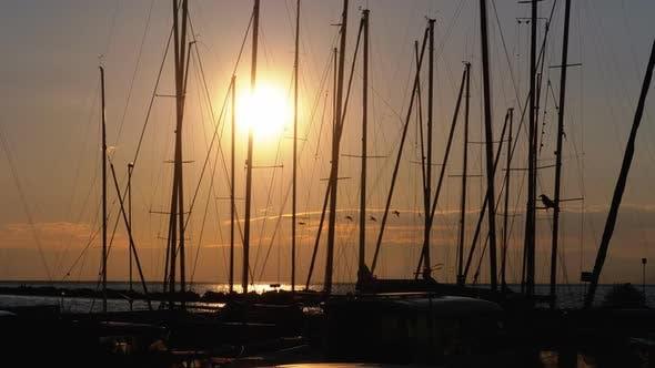 Thumbnail for Silhouetten von geparkten Freizeityachten bei Sonnenuntergang im Hafen am Genfersee, Montreux, Schweiz
