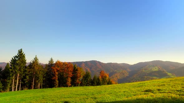 Autumn Vivid Pastures Near Forests