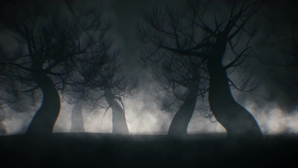 Halloween-Waldhintergrund