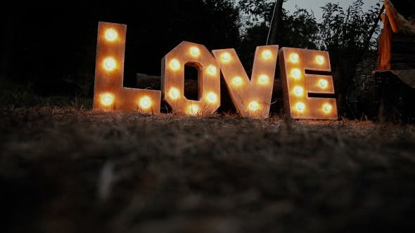 Cover Image for The Word Love Glows In The Dark