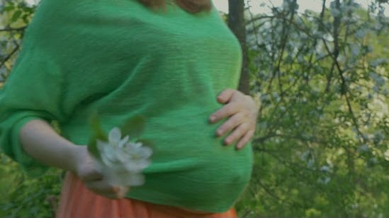 Thumbnail for Belly Of a Pregnant Woman