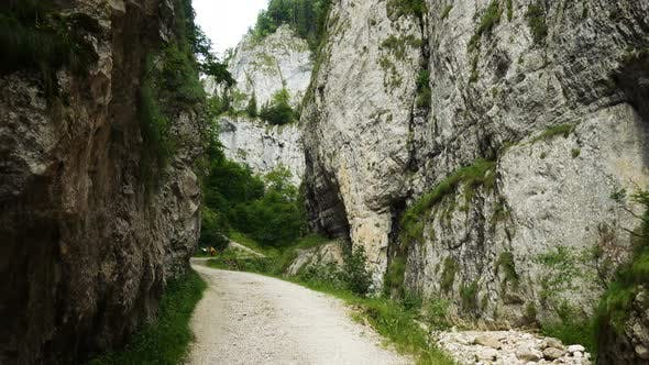 Thumbnail for Zarnesti Canyon In Romanian Carpathians