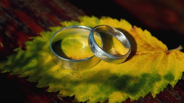 Thumbnail for Two Wedding Rings On a Yellow Sheet
