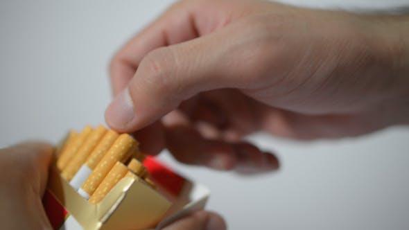 Thumbnail for Offering Cigarette