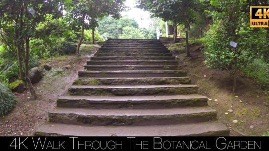 Thumbnail for Walk Through The Botanical Garden 4